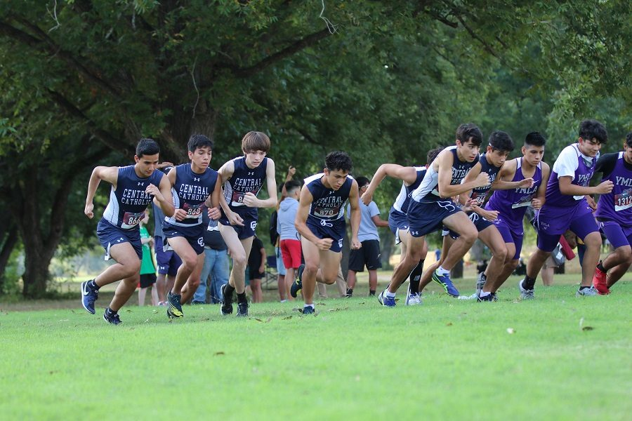 Button XC earns recognition during Fall season