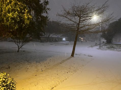 Historic snow storm blankets San Antonio